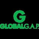 Global gap-300x300